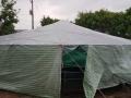 Ưu điểm nổi bật khi ương tôm trong nhà kín vào mùa mưa