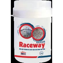 - Etrovit Raceway