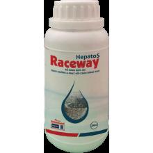- Hepatos Raceway