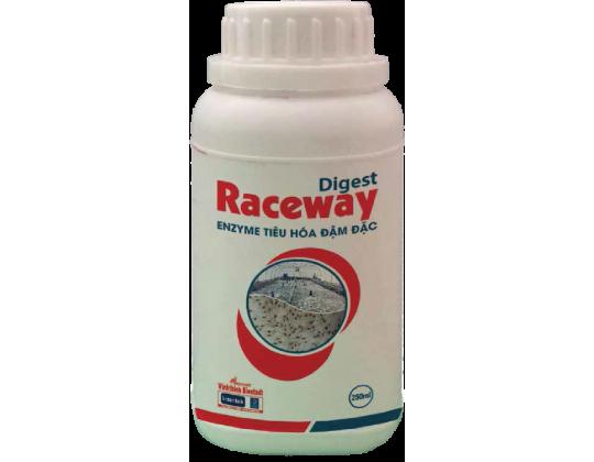 Digest raceway