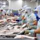 Liệu cá tra có bị gián đoạn tại các siêu thị Hoa Kỳ trong năm 2017?