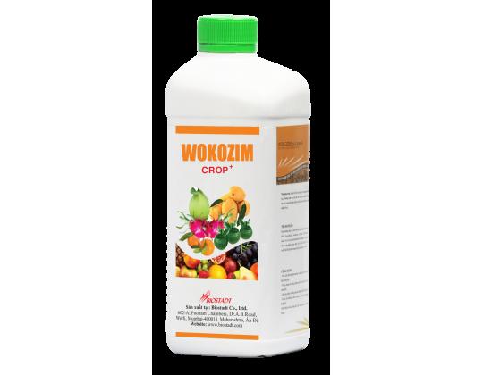 WOKOZIM lỏng chuyên dùng cho cây ăn trái