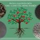 Phân biệt các loại phân hữu cơ sử dụng cho canh tác Nông Nghiệp