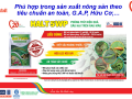 Quản lý sâu hại trên ớt bằng thuốc trừ sâu sinh học HALT 5WP – hiệu quả vượt trội, nông sản an toàn