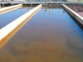Xử lý nước thải trong cơ sở sản xuất giống