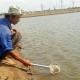 Bạc Liêu: Chuyển 500ha đất sản xuất muối kém hiệu quả sang nuôi Artemia