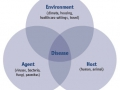 Tổng quan về sử dụng chế phẩm sinh học (probiotics) kiểm soát dịch bệnh trong nuôi trồng thủy sản - Phần 1