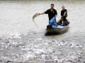 Những hộ nông dân nuôi cá tra quy mô nhỏ đầu tiên đạt chứng nhận nhóm nuôi trồng thủy sản