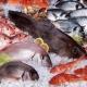 10 dữ kiện thú vị về ngành thủy sản