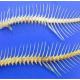 Hiệu quả của acid hữu cơ - chất thay thế kháng sinh trong khẩu phần thức ăn nuôi cá rô phi