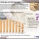 Xuất khẩu gạo của Việt Nam ở mức thấp nhất trong 8 năm qua