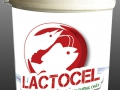 Lactocel - New digestive enzyme to promote fast growth and protect gut of shrimp