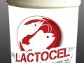 LACTOCEL