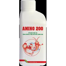 - AMINO 200