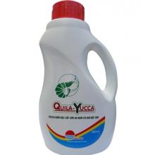 QUILA-YUCCA