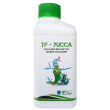 TF-YUCCA