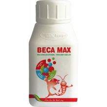 BECA MAX - BECA MAX
